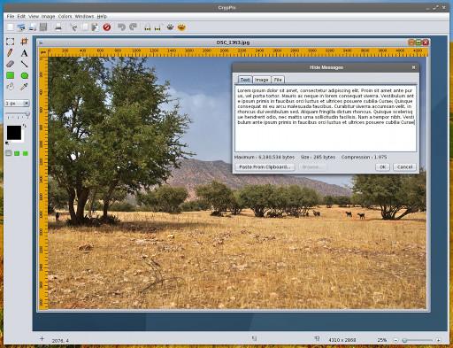 CrypPic - jak ukryć coś między pikselami