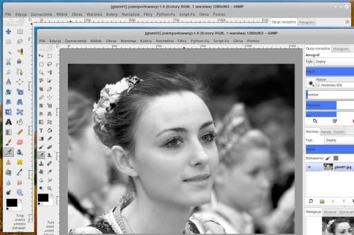 GIMP - ikony domyślne i poprawione