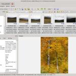 XnView MP 0.79 z poprawkami