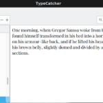 TypeCatcher 0.3 dla niezdecydowanych