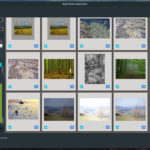 Rapid Photo Downloader 0.9.16 dogada się z GNOME